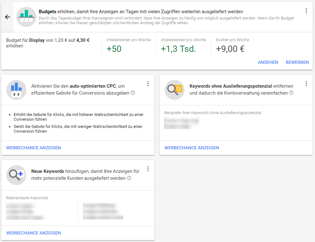 Google AdWords Alpha - Werbechancen Budgets im Detail