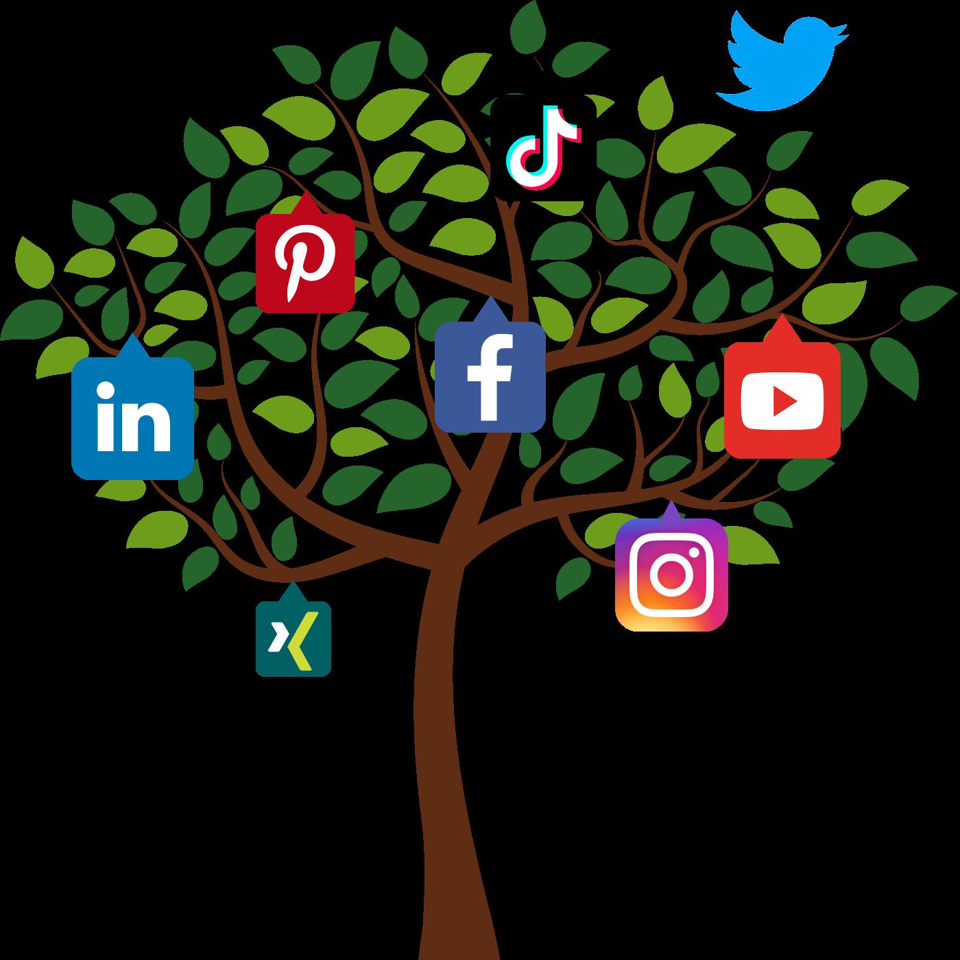 Social Media Marketing TrafficDesign